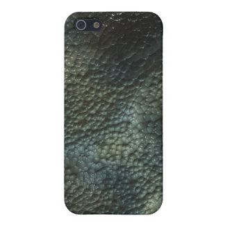 Reptile Lizard Snake Skin iPhone Case iPhone 5 Cases