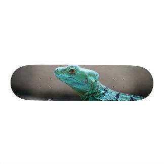 Reptile Skate Board Decks