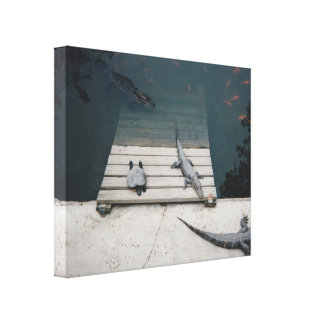 Reptiles Basking Gallery Wrap Canvas