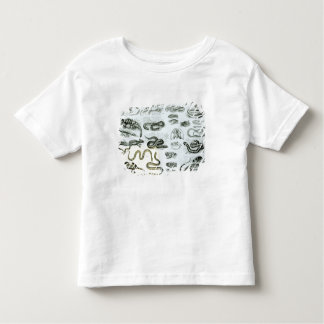 Reptiles, Serpents and Lizards Toddler T-Shirt