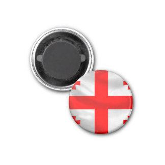 Republic of Georgia Flag Magnet
