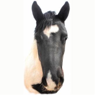 Rescue Horse Ornament! Photo Sculpture Decoration