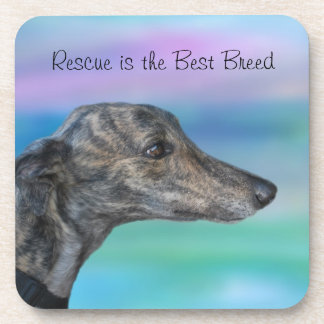 Rescue is the Best Breed coasters