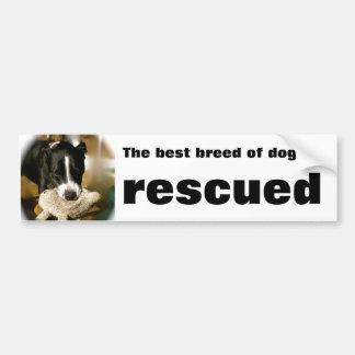 Rescue Pet Bumper Sticker