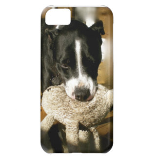 Rescue Pet Sweet Bully Breed Dog iPhone 5C Cover