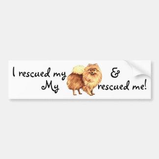 Rescue Pomeranian Bumper Sticker