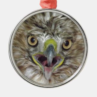 Rescued and Released Hawk Christmas Ornament