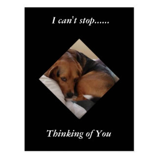 "Rescued Beagle ""Oliver"" Thinking of You Postcard"
