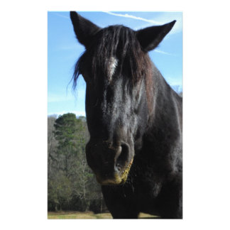 Rescued Black Draft Horse Stationery
