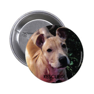 RESCUED dog button