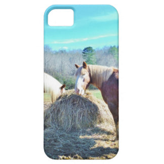 Rescued Draft Horses eating hay iPhone 5 Case