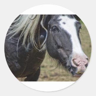 RESCUED HORSE ROUND STICKER