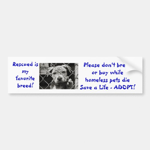Rescued is my favorite breed don't breed or buy... bumper stickers