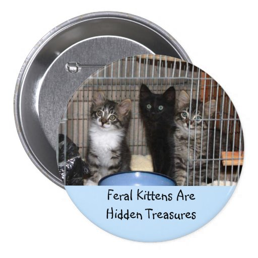 Rescued Kitten Treasures Button