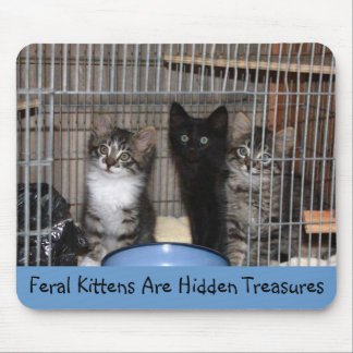 Rescued Kitten Treasures Mouse Pad