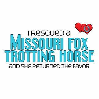 Rescued Missouri Fox Trotting Horse Female Horse Photo Cut Out