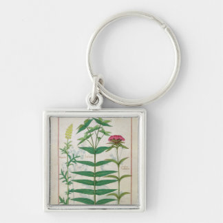 Reseda, Euphorbia and Dianthus Key Ring