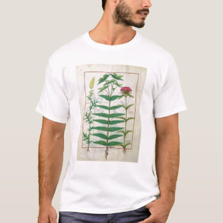 Reseda, Euphorbia and Dianthus T-Shirt