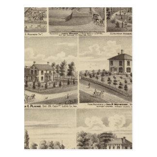 Residences, farms in Polk Postcard