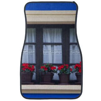 Residential housing with flowers in windows car mat