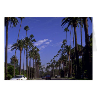 Residential Rodeo Drive, Beverly Hills, California Card