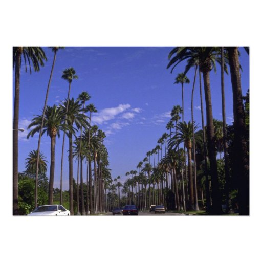 Residential Rodeo Drive, Beverly Hills, California Invite