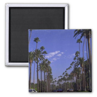 Residential Rodeo Drive, Beverly Hills, California Square Magnet