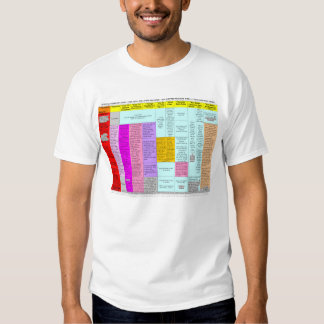 Residuals summary chart t-shirt (front only)