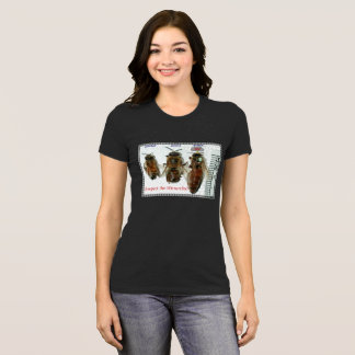Respect the Hierarchy-Queen Bee Ladies T-Shirt