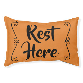 Rest Here Pet Bed (Orange with Black)