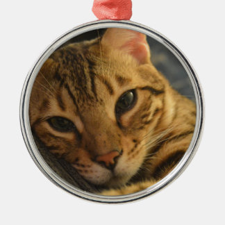 Resting Bengal Silver-Colored Round Decoration