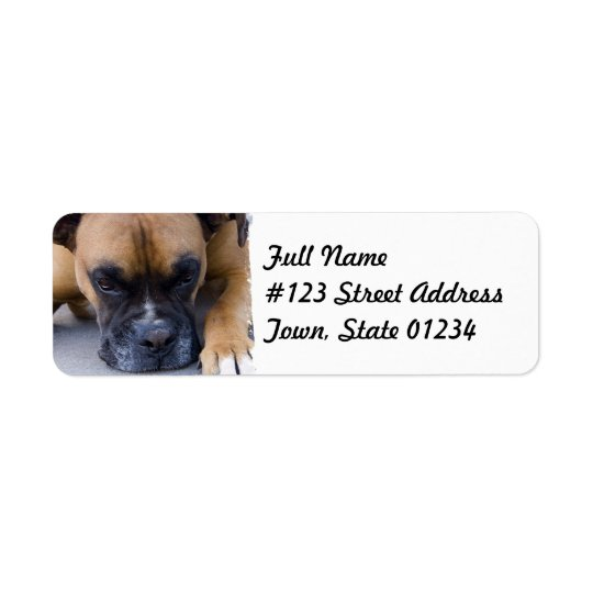 Resting Boxer Dog Mailing Label Return Address Label