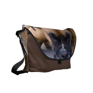 Resting Boxer Dog Messenger Bag