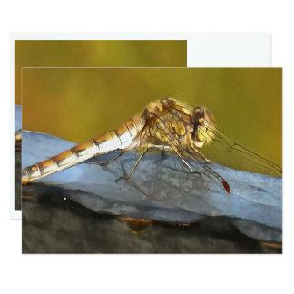 Resting Dragonfly 13 Cm X 18 Cm Invitation Card