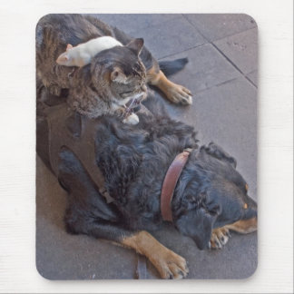 Resting Easy Mouse Mat