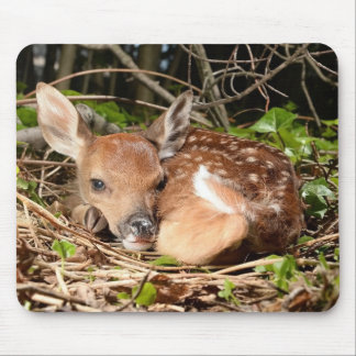 RESTING FAWN MOUSE PAD