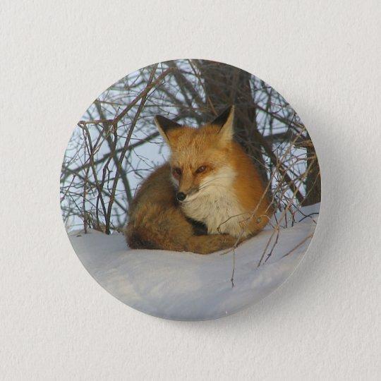Resting Fox 6 Cm Round Badge