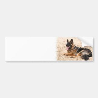 Resting German Shepherd Dog Bumper Sticker