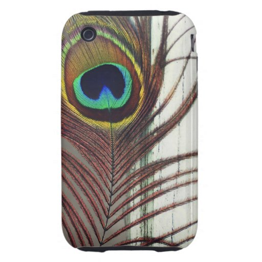 Resting Peacock Feather iPhone 3 Tough Covers