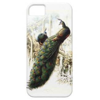 Resting Peacocks iPhone 5 Cover