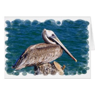 Resting Pelican Greeting Card