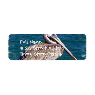 Resting Pelican Mailing Label Return Address Label