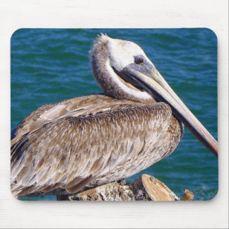 Resting Pelican Mouse Pad
