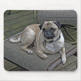 Resting Pug Mouse Pad