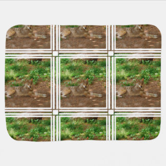 Resting Red Wolf Buggy Blankets