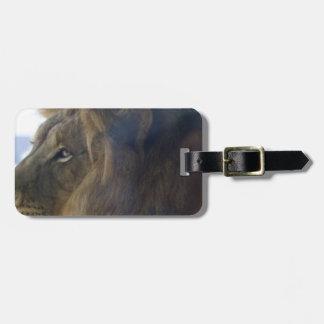 resting tiger luggage tag