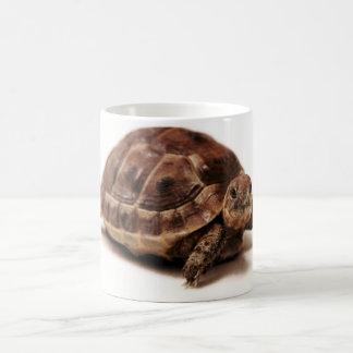 Resting Tortoise Coffee Mug