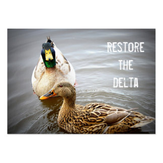 Restore The Delta Business Card