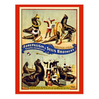 Restored seals sea lions Forepaugh Sells Postcard