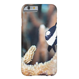 Reticulate dascyllus barely there iPhone 6 case